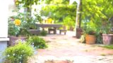 detached_house_garden